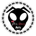 Ant%20Shop%20FAVICON%20BIG_edited.jpg
