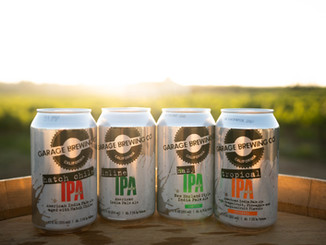 4 IPAs With a View 4.jpeg