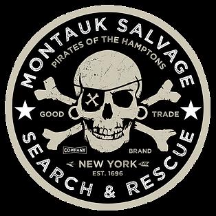 msc Skull logo 28.png