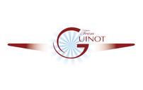 Team Guinot Wingwalkers • Branding & Logo development