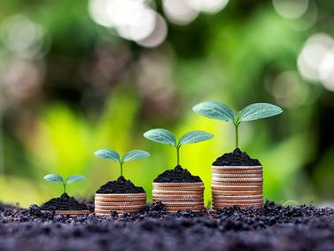 Comptabilité socio-environnementale : la prise en compte des enjeux environnementaux et sociaux