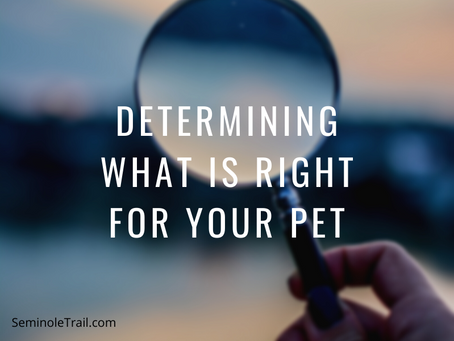 Determining What Is Right For Your Pet