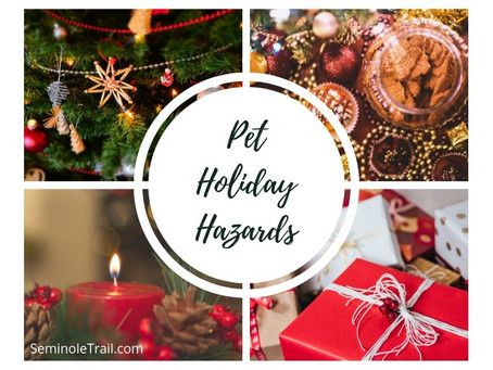 Pet Holiday Hazards