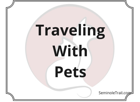 Video: Traveling With Pets