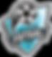 City_Futsal_FC.png