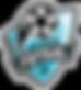 City_Futsal.png