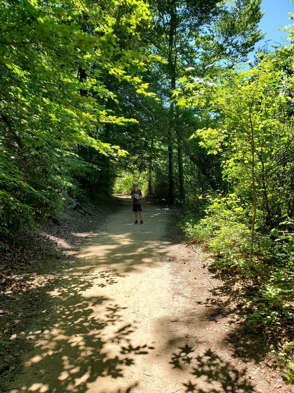 Shady walking trails in Southern Maryland