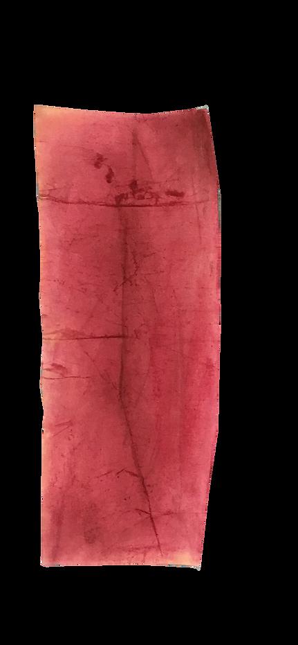 碎片 纸上色粉 20x45cm 2019.png