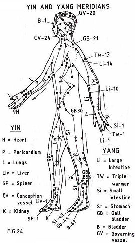 Body Acupuncture Image.jpg