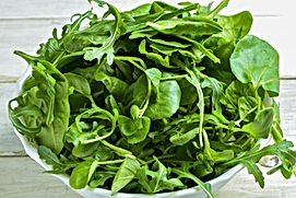 watercress.jpg
