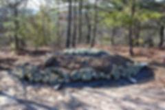 Wind Turtle Mound.jpg