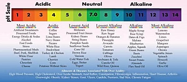 pH Food Chart.jpg