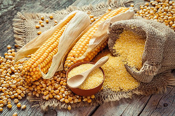 Corn Meal.jpg