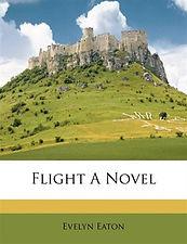 Flight a Novel.jpg