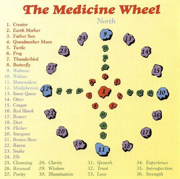 Med Wheel Diagram CD.JPG