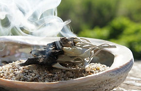 sage smudge burning.jpg
