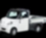 Ligier Flex Leichtkraftfahrzeug Auto-Einmal-Eins Mobil ab 16