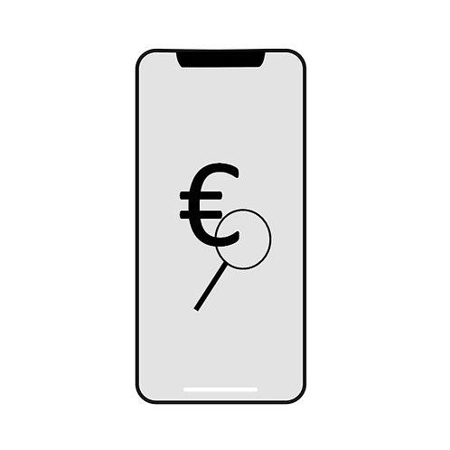 iPhone XS Max Kostenvoranschlag