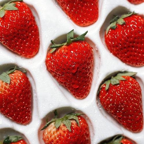 Strawberry Cream Lip Balm