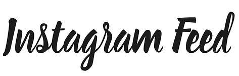 Instagram Feed.jpg