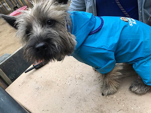 Doggie raincoat for SMALL dogs