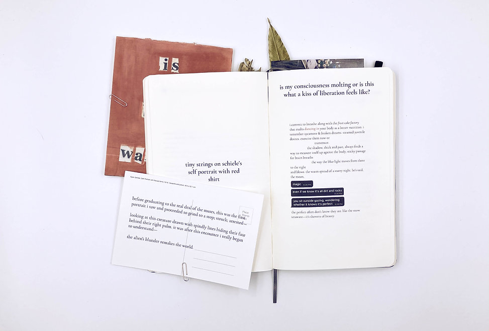 WHISKERY SQUID (MEMOIRS), interactive sculpture/artbook, a collection of lyrical poems by Nigerian curator and writer Adéolá Olákìítán, in collaboration with visual artist Alexander Si, published by 24EBroadway