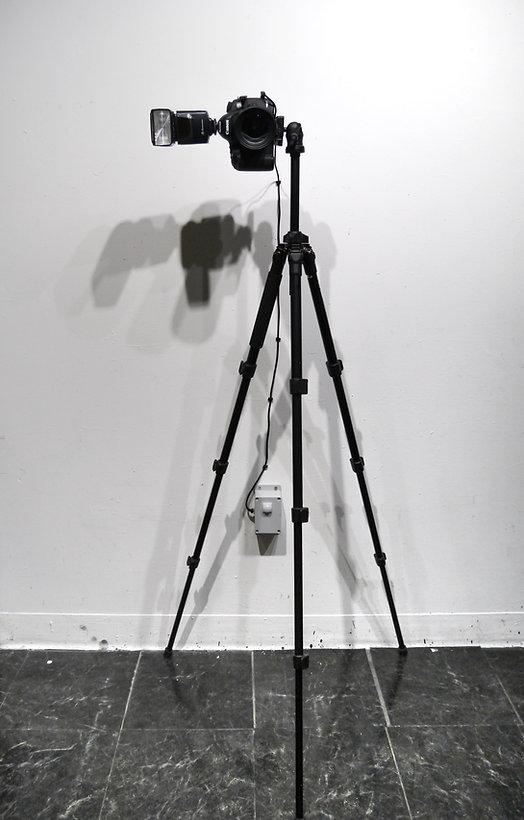 Exposure (single), Alexander Si