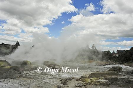 01Nuova Zelanda geyser.jpg