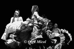cuban dance5