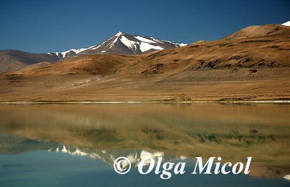 Tsokar salate lake2.jpg