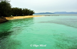 Australia Barriera Corallina.jpg
