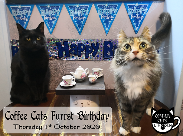furrst bday[7517].png