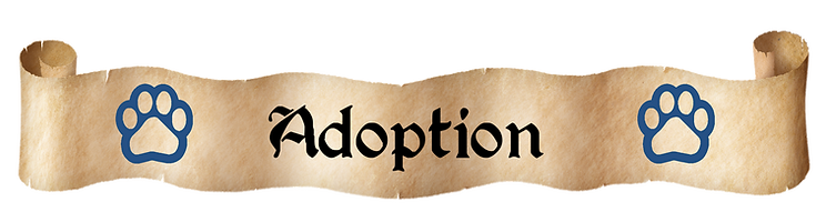 adoption.png