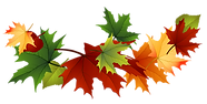Fall-autumn-leaves-clip-art-transparent-background_167144.png