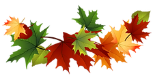 Fall-autumn-leaves-clip-art-transparent-