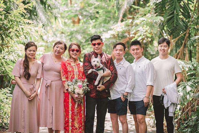 Pet Wedding Photography SG