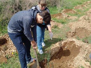 18 марта 2017 года школа Морфосис присоединилась к движению и посадке 1000 деревьев на Кипре!