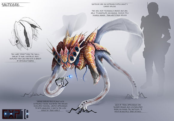 salticere_creature_concept_sheet_by_fran