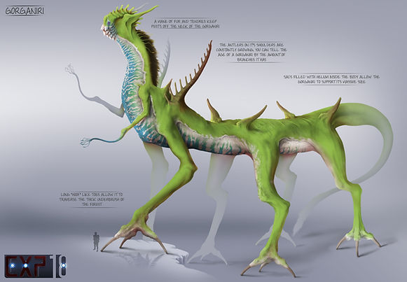 gorganiri_creature_concept_sheet_by_fran