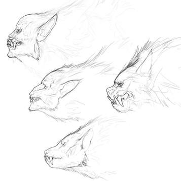 werewolf head exploration