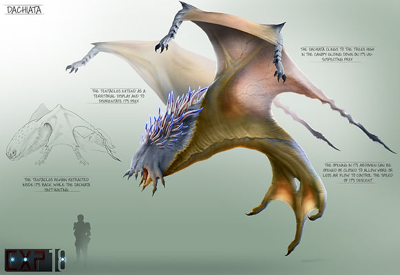 dachiata_creature_concept_sheet_by_frane