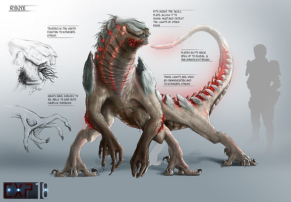 Rynyx Creature Concept Sheet - Photoshop Painting
