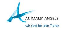 animals angels