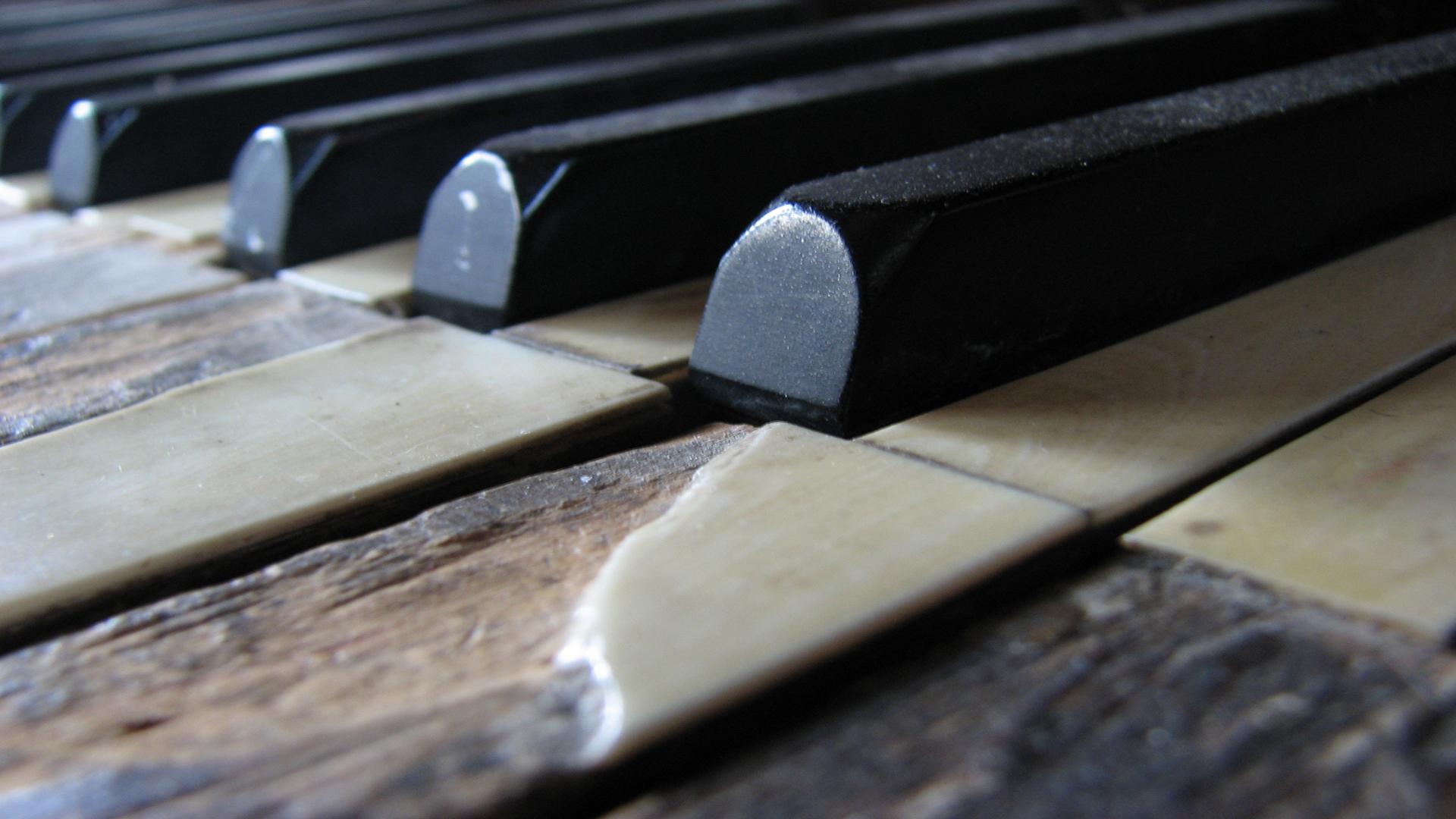 香港鋼琴調音 Piano Tuning