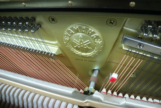 Yamaha U3 second hand piano 2010 Serial No. 6295876 $43800