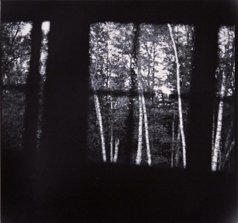Bedroom, Birches