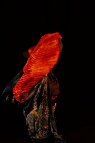 danai pappa dancer