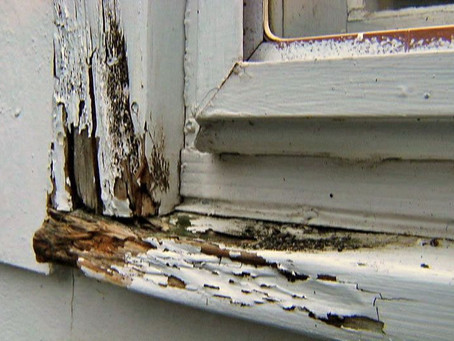 The Importance Of Replacing Rotten Wood In Your Home.