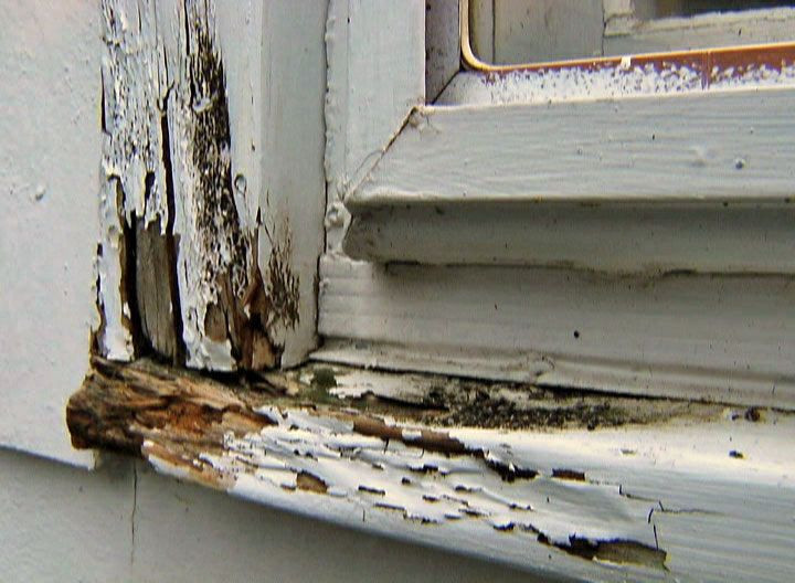 Schenectady NY Home Inspector Importance Of Replacing Rotten Wood In Your Home
