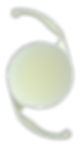 Acrysof_IQ_Single_Light_Natural_Toric.pn